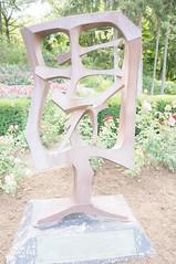 11872100_10153099685087076_2102550723028763050_o (jmac33208) Tags: park new york roses rose garden central schenectady