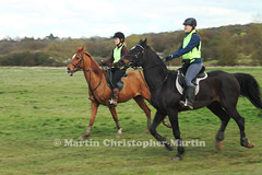 Horses on Chingford Plain 3 (martin christopher-martin) Tags: epping eppingforest chingfordplain horses horse rider horseriders equestrian canter trot gallop walk