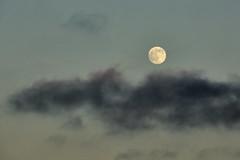 Terranea moon rise 2 071816 (evimeyer) Tags: terraneamoonrise ranchopalosverdes