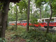 Csillebrc (Ferencdiak) Tags: pioneer railway ttrvast gyermekvast vast budapest buda hills