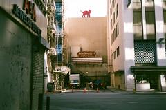 1604 California Olympus 35RC Superia 4001 (nooccar) Tags: california ca film analog losangeles superia400 olympus35rc filmphotography ilovefilm nooccar dontstealart devonchristopheradams devoncadams photobydevonchristopheradams contactmeforusage