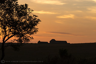 SOUTH DOWNS SUNSET