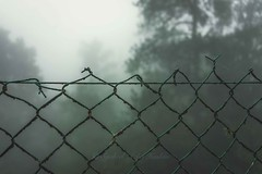 Foggy on the other side (Syahrel Azha Hashim) Tags: divider foggy nature sony 2016 shallow holiday nopeople simple morning details wires a7ii fog highaltitude fence dof getaway handheld colorimage vacation prime light naturallight frasershill colorful beautiful travel syahrel weather 35mm colors sonya7 ilce7m2 pahang malaysia detail