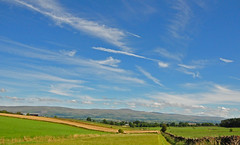 Pennines from Penrith. (greengrocer48) Tags: pennines crossfell penrith cumbria