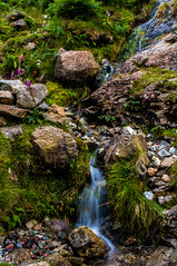 Small is beautiful! (Harvey Smith) Tags: beck english lake district countrysidewalks thelakes landscape harvey smith photography 2016 lakes summer stream cumbria northern england northwest green pentax englishlakedistrict harveysmithphotography2016 lakedistrict northernengland