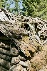 mt_garnet_cabin-16.jpg (BradPerkins) Tags: abandonedtown lines ghosttown ghost abandonedcabin garnet cabin montana wood shadows cabininthewoods