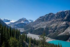 Banff 90 (4brownies) Tags: banff alberta canada 2016 vacation peyto lake