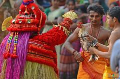 """FACE TO FACE WITH DEATH !"" (GOPAN G. NAIR [ GOPS Photography ]) Tags: animal photography kerala ritual hinduism sacrifice gops theyyam gopan gopsorg gopangnair gopsphotography"