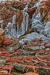 Eisbach - HDR (bohnengarten) Tags: mountain alps eos schweiz switzerland maria swiss berge val alpen engadin segl sils graubnden fex 70d