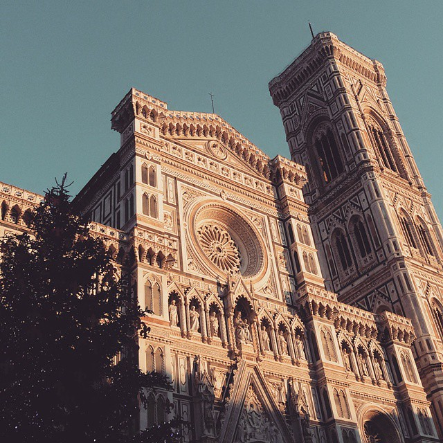 MERRY CHRISTMAS and happy holidays from Florence 💖 #florence #firenze #christmas #christmastree #santamariadelfiore #natale