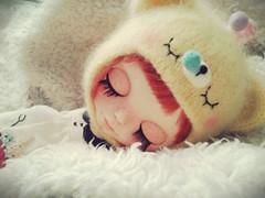 Has a teddy bear sleeping in my bed! Tem um ursinho dormindo na minha cama!