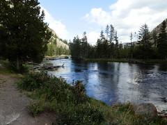 Yellowstone National Park, Wyoming (yellowroseoftexasmindy) Tags: trees mountains landscapes wildlife parks rivers yellowstone nationalparks