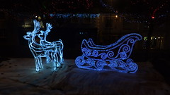 reindeer and sleigh (museque) Tags: