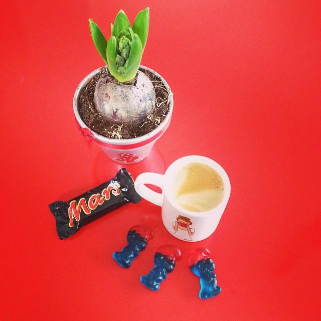 Petite pause gourmande ☕️🍬🍫 #schtroumpfs #mars #tasse #mylittlebox #café #jacinthe #Noël #confiserie #bonbons #dessert #candy #coffee #kanako