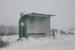 the uninviting bus stop (Robeevans) Tags: road travel holiday snow cold bus travelling ice public weather iceland coach europe wind seat transport eu stop infrastructure shelter blizzard chill bitter hostile canoneos500d rebelt1i