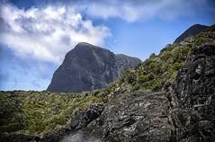 Mt Gower/Mt Ligdbird, Western Ridges, Lord Howe Island (Iksana Imagery) Tags: lordhoweisland mtgower mtlidgbird