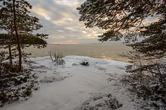 Joensuu - Finland (s.niemelainen) Tags: winter lake snow beach nature suomi finland landscape finnland snowy lumi talvi maisema finlandia joensuu luonto ranta jrvi karjala pyhselk kuhasalo luminen pohjois kalmonniemi