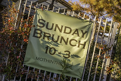 Sunday Brunch Sign MothInThe.Net (Mabry Campbell) Tags: november autumn usa green fall sign fence photography photo dallas texas photographer realestate unitedstates image tx nopeople photograph commercial 100 24mm client sundaybrunch fineartphotography 2014 f35 architecturalphotography dallascounty cityofdallas colorimage commercialphotography commercialrealestate commercialproperty designdistrict architecturephotography 3500mapleavenue dallasdesigndistrict houstonphotographer 3500maple sec tse24mmf35lii loweroaklawn cassidyturley mabrycampbell bridgerconway november262014 20141126h6a0523