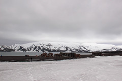 IMG_7609 (amdibene) Tags: green antarctica