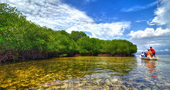 Pulau Lombok forest of mangrove (kisyu) Tags: travel sea bali forest canon ship mangrove hdr 5dmarkii tokina1628