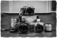 DSC00454 (eggwah123) Tags: blackandwhite home studio lumix system collection lenses m43 primes primelens tonality em5 mirrorless leica25mmf14 microfourthirds mzuiko mzuiko45mmf18 epm2 mzuiko75mmf18 tonalitypro