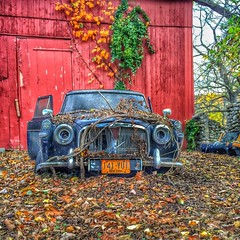 Old Mercedes (Daveyal_photostream) Tags: fall nature beautiful beauty leaves barn mercedes antique oldcar automobiles redbarn barndoor naturetakesover mycamerabag iphoneshot mygearandme meandmygear