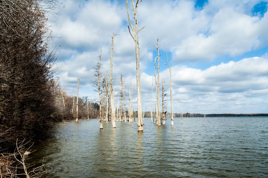 Hovey lake fish and wildlife area videos for Fish lake indiana