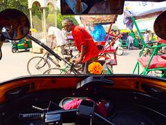 A Plastic Flower Grows in My Sweet Toxic City (Mayank Austen Soofi) Tags: flower delhi plastic autor polution walal ickshaw