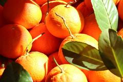 Orange (aminasalihovic) Tags: orange markt frucht cartafotografica2016 kulturtage2016