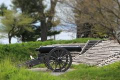 Cannon (jmaxtours) Tags: ontario canada fort mortar cannon artillery forterie forterieontario
