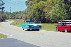 1959 Chevrolet Convertible Driving Away (StevenM_61) Tags: road street chevrolet car automobile florida convertible chevy 1959 pineridge