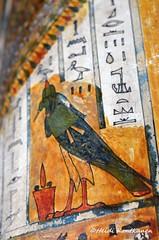 Ancient Egypt (konde) Tags: bird ancient priest coffin vignette hieroglyphs thebes deities deirelbahri cairomuseum anthropoid 25thdynasty thirdintermediateperiod mummycoffin
