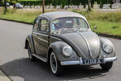 Coccinelle (xwattez) Tags: volkswagen coccinelle voiture automobile allemande ancienne old german car vhicule transports routedespagne toulouse france 2016