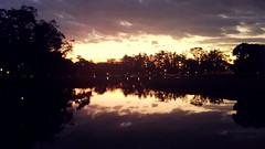 E ao fim da tarde...  Ele vai! (Alvaro_CaCO) Tags: ibirapura lago lake pordosol parqueibirapuera sp saopaulo sopaulo