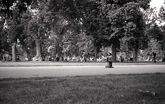 Scooting (n. rippe) Tags: denver tmax400 citypark kodaktmax
