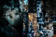 Tombes secrtes (www.danbouteiller.com) Tags: japan japon japanese japonais tokyo nishi nippori nishinippori zen buddhist traditionnal asian asia asiatique tomb grave tombs graves cemetery canon canon5d eos 5dmk2 5d 50mm 50mm14 5d2 5dm2