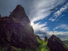 On top of Wetterau (Hessen -Germany) (jan.scho) Tags: milan himmel wolken fels sonne sonnenstrahlen gipfel greifvogel bdingen wilderstein