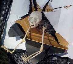 monkey skeleton emerging from box (lisafree54) Tags: paper skeleton monkey escape box surrealism ripped free surreal cardboard bones torn surrealist emerging cco freephotos