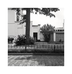 ** (ha*voc) Tags: rolleiflex35f carlzeissplanar75mmf35 film 6x6 square 120 mediumformat bw id11 urban urbanfragments haarlem