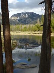East Inlet Trail View (R-E-M) Tags: colorado grandlake rmnp rockymountainnationalpark
