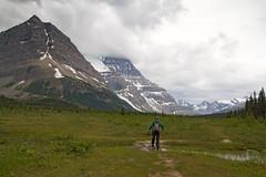 Creek Crossing at Robson Pass (jpmckenna - Tenquille Lake Up Next) Tags: mountrobson mtrobson mountrobsonprovincialpark bcparks hikingbritishcolumbia canada canadianrockies berglakebackpack getoutisde hiking