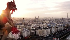 Paris, Gargouille (organum) Tags: paris france notredame gargouille