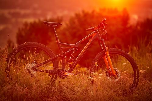 Takin Shots image