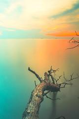 Tunggul Tunggal (azharii___) Tags: pantaikelanang seascape landscape d3200 longexposure slowshutter sunset nikon nature ocean ndfilter