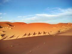 Cielo, sombras y arenas (yanitzatorres) Tags: frica aventura excursin caravana dromedarios morocco marruecos sahara desierto dunas arena cielo sombra