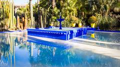 IMG_2754 (alitopics) Tags: majorelle marrakech jardin fontaine bleu yves saint laurent travel blue fountain morrocco foliage jardn parc garden reflets water reflects