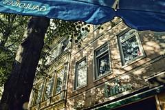 ~ (timmytimtim75) Tags: bremen viertel light shadow tree facade windows gauloises litfass colorefex