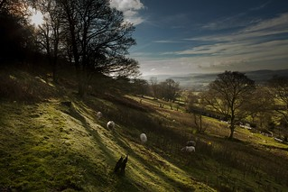 Shropshire hill farm