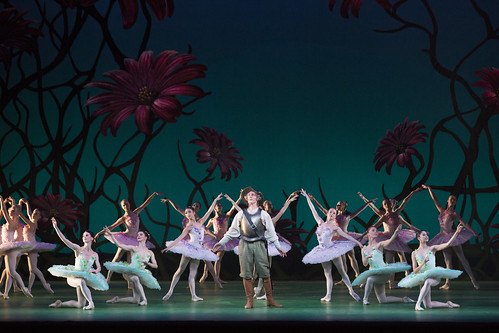 Your Reaction: What did you think of Carlos Acosta's Don Quixote live in cinemas 2019?