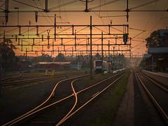 Golden tracks (PixPep) Tags: sunset urban dof railwaystation canoneos1dsmarkiii